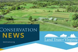 LTV Conservation News